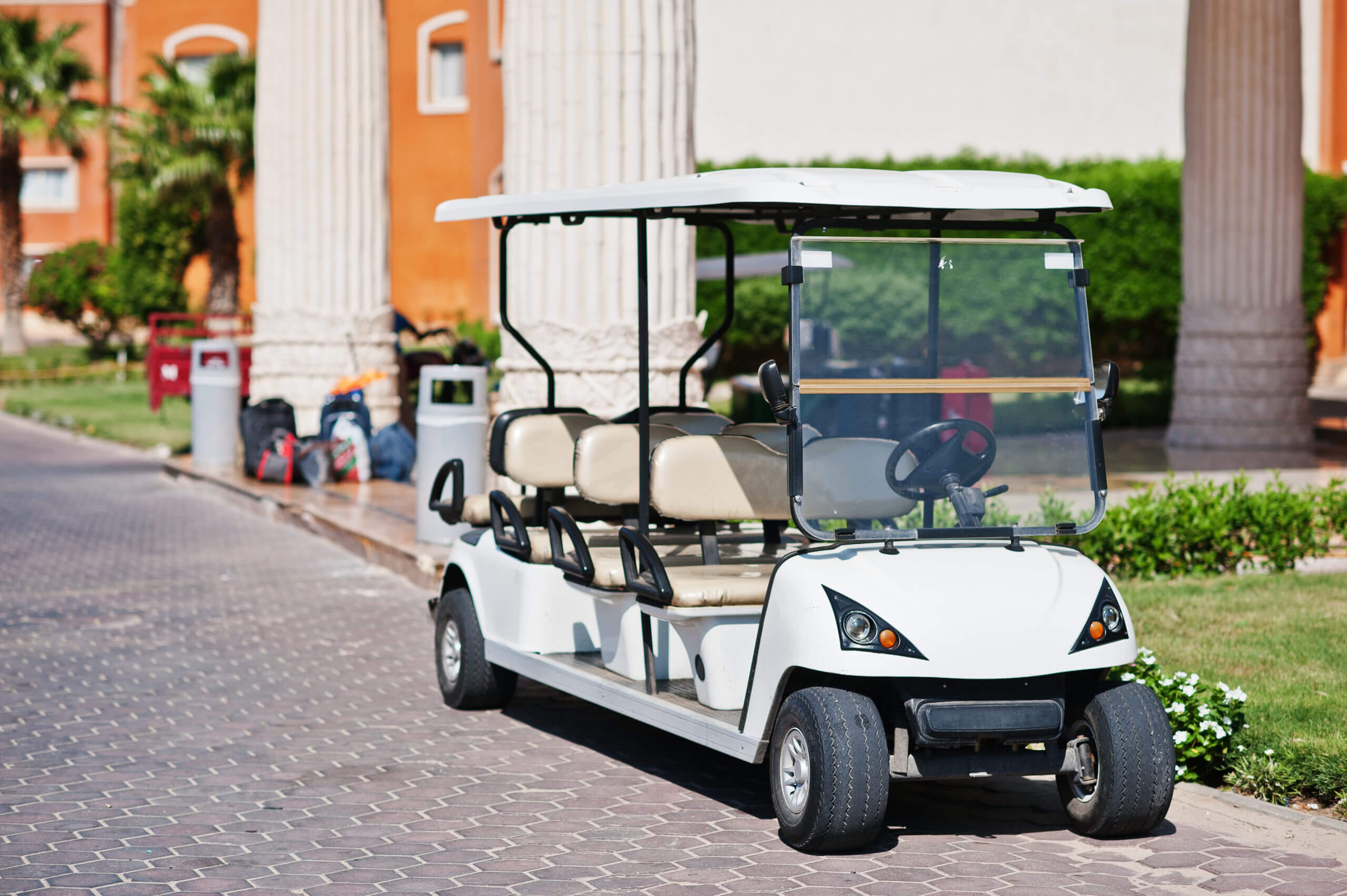 Hotel golf cart buggy batteries